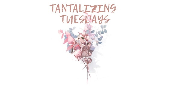 Tantalizing Tuesdays at Beauty Salon in Port Elizabeth